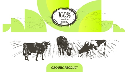 Cow in graphic line style, hand drawing vector image 写真素材 - 122206715