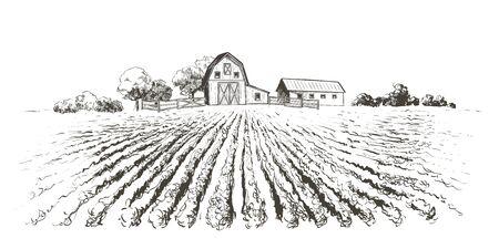 Rural landscape field . Hand drawn vector illustration. Countryside landscape. Engraving style Illustration