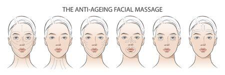 Conjunto de instrucciones cosméticas faciales en mujer. Ilustración de vector
