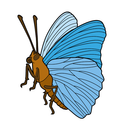 entomological: Butterfly - insect line drawing collection for design and scrapbooking