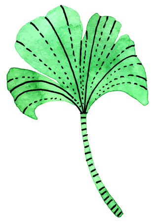 vectorized: Vectorized watercolor hand drawing - leaf of Ginkgo biloba Illustration