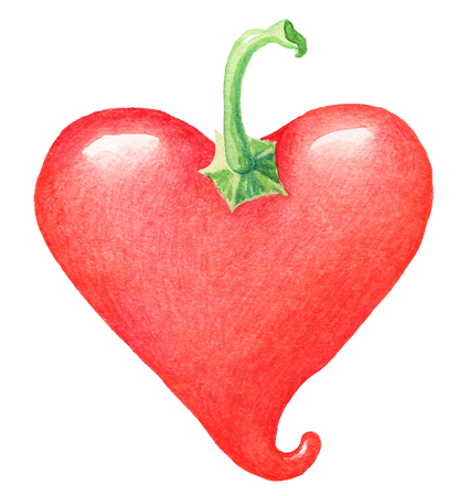 painting of hot heart shaped allspice pepper - watercolor vector illustration fresh organic food Illustration