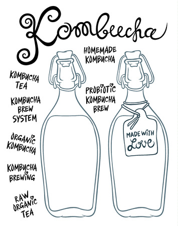 Kombucha or Hongo in glass bottles - Natural homemade healthy drink for health - hand drawing vector illustration