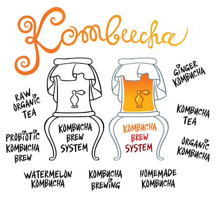 tipple: Kombucha (Hongo) beverage system - Natural homemade healthy drink for health - hand drawing vector illustration
