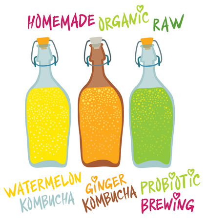 Kombucha (Hongo) in different glass  bottles - Natural homemade healthy drink for health - hand drawing vector illustration