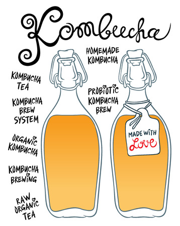 quencher: Kombucha or Hongo in glass bottles - Natural homemade healthy drink for health - hand drawing vector illustration