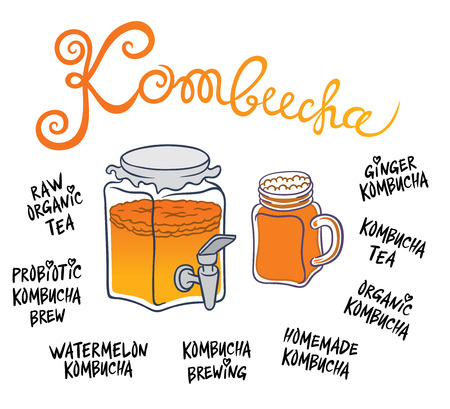 quencher: Kombucha (Hongo) beverage system - Natural homemade healthy drink for health - hand drawing vector illustration
