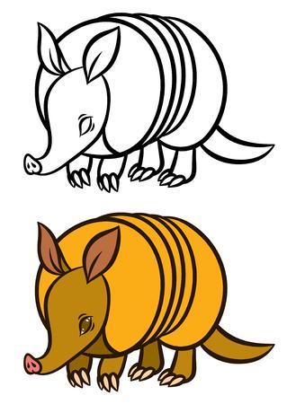 terrestrial mammal: Armadillo hand drawn vector illustration - for children coloring book Illustration
