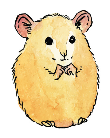 cute hamster - hand drawing watercolor vector illustration Illustration