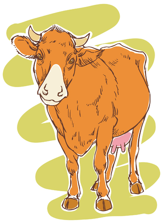 hoofed mammal: Hand drawing of a happy cow