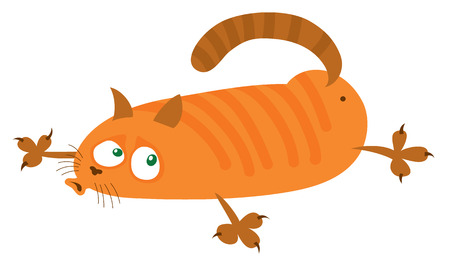 lie down: red cat lies on the belly - cartoon vector drawing Illustration