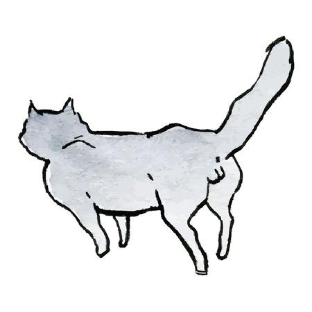 gray cat: Gray cat - hand drawn vector watercolor illustration Illustration