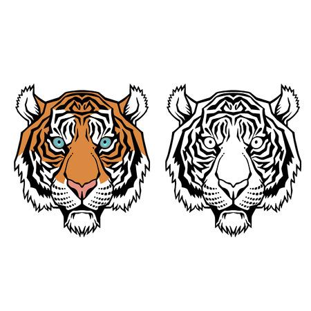 cruel zoo: Tiger head. Vector illustration of a tiger head.