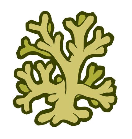 corales marinos: ilustración vectorial estilizada - coral marino
