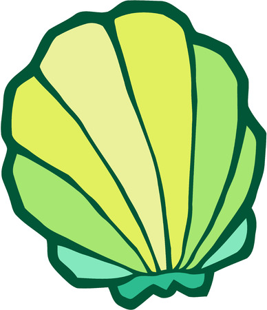 scallop shell: Scallop shell - stylized vector illustration