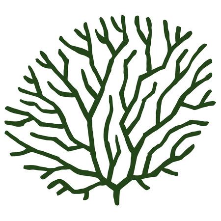 pond life: green seaweed - stylized vector illustration