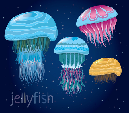 nettle: various fantastic jellyfish - Set of vector illustrations of marine life for design