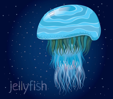 nettle: fantastic jellyfish - Set of vector illustrations of marine life for design
