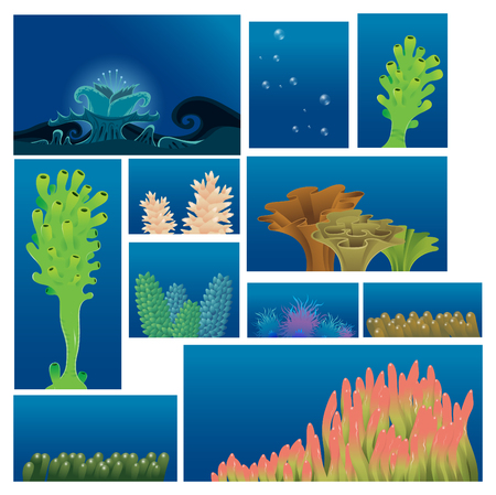 stony coral: underwater plants and corals - vector illustration set