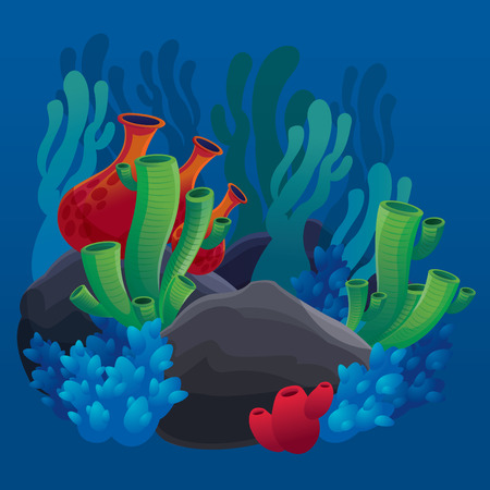 set of marine plants, corals and rocks on the sea floor - vector illustration marine life for design