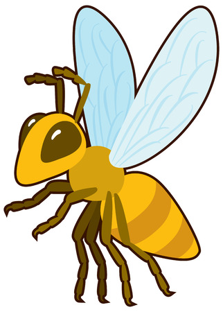sympathetic: Cartoon vector golden Honey Bee Stock Photo