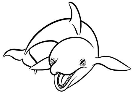 subaquatic: orca or killer whale - vector illustration Illustration