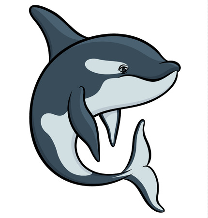 orcinus: Vector drawing - colorful art orca