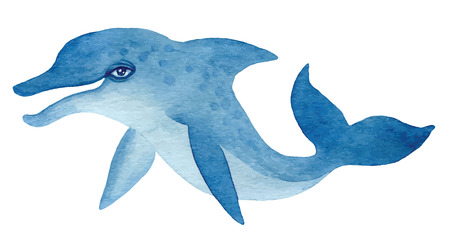 dolphin: blue dolphin, hand drawn watercolor vector illustration