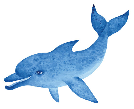 blue dolphin, hand drawn watercolor vector illustration