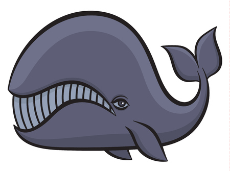 pygmy: Cartoon hand drawn vector illustration of whale Illustration