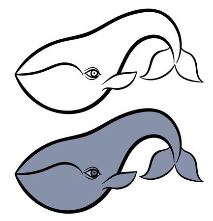 minke: Cartoon hand drawn vector illustration of whale Illustration