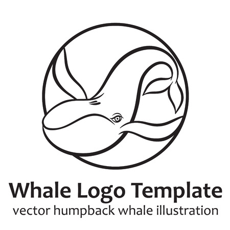 baleen whale: Whale - vector illustration