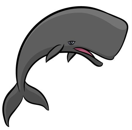 espermatozoides: cachalote - ilustración de dibujos animados vector dibujado a mano de la ballena Vectores