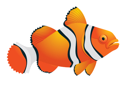 spawning: Tropical fantasy colorful fish - vector illustration on white background for design