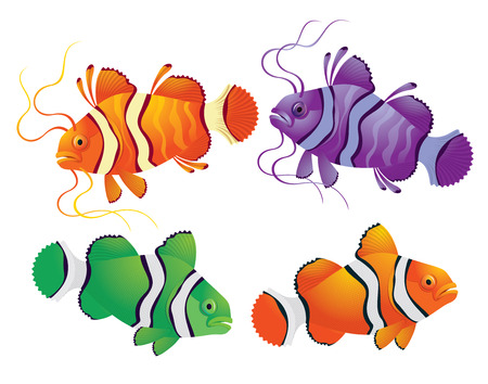 Tropical fantasy colorful fish - vector illustration on white background for design