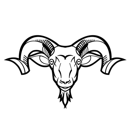 mouflon: ram head twisted horns mountain dwellers separate head vector black and white can be used as a design shirts