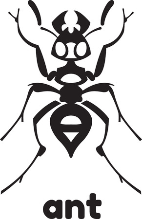 ant insect vector illustration - set of household pests in pure style