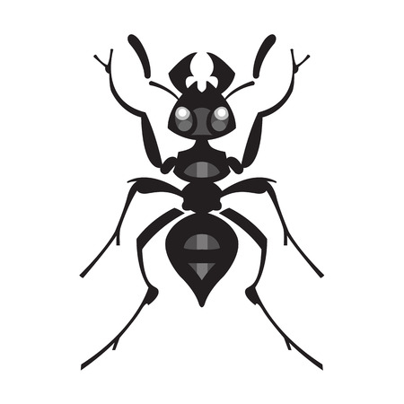 ant: ant insect vector illustration - set of household pests in pure style