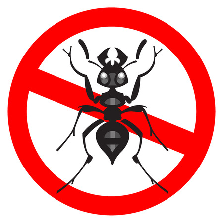 insect repellent: ant insect vector illustration - set of household pests in pure style