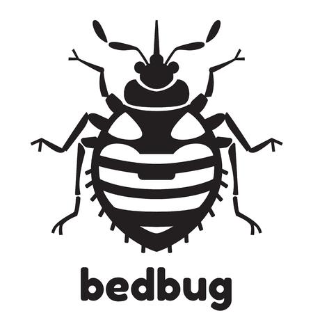 Home bedbug vector illustration - set of household pests in pure style Illustration
