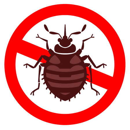 Home bedbug vector illustration - set of household pests in pure style Illustration