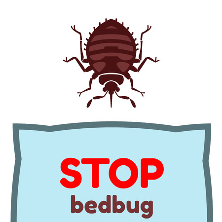 Home bedbug vector illustration - set of household pests in pure style Ilustrace