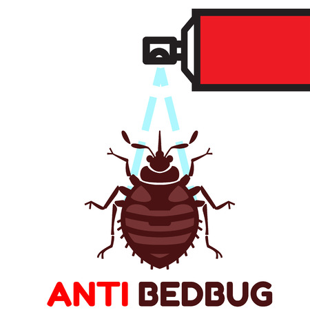 insect control: Home bedbug vector illustration - set of household pests in pure style Illustration