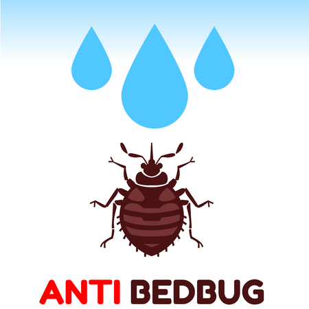 pest control equipment: Home bedbug vector illustration - set of household pests in pure style Illustration
