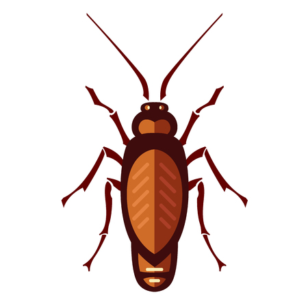 a disease carrier: cockroach in pure style - set of household pests in pure style - good for icons, packaging and design Illustration