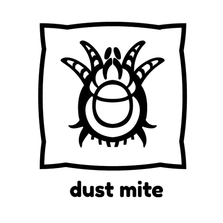 parasitic infestation: dust mite vector illustration - set of household pests in pure style