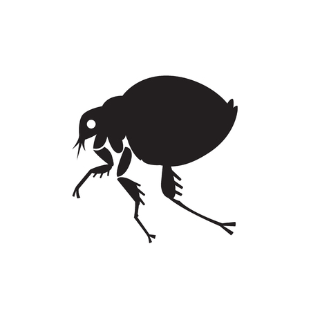 flea home insect parasite vector illustration - set of household pests in pure style Illustration