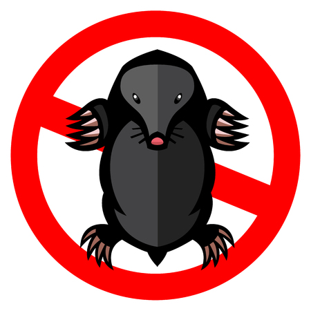 animal mole: mole pest animal vector illustration - set of household pests in pure style