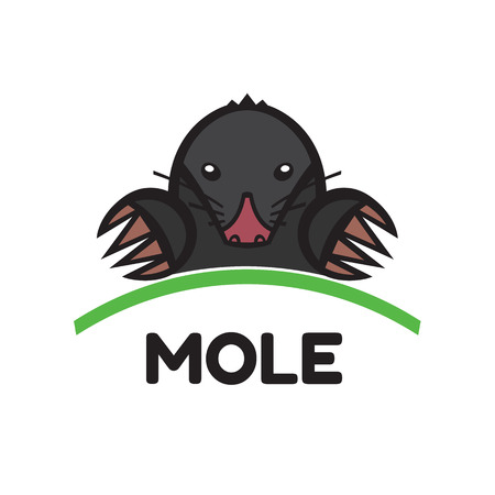 sightless: mole pest animal vector illustration - set of household pests in pure style