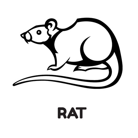 poison sign: rat pest vector drawing home parasite - set of household pests in pure style Illustration